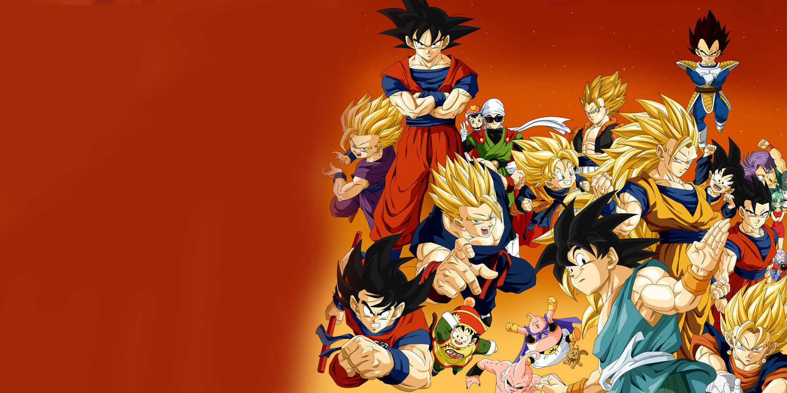 BANNER DRAGON BALL